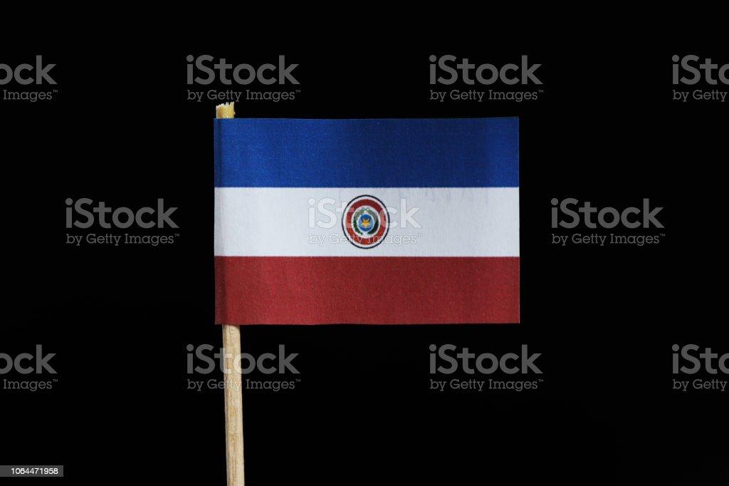 Una bandera nacional de Paraguay en el palillo de dientes sobre fondo negro. Borrado de una tribanda horizontal de rojo, blanco y azul, en el anverso con el escudo de Paraguay - foto de stock