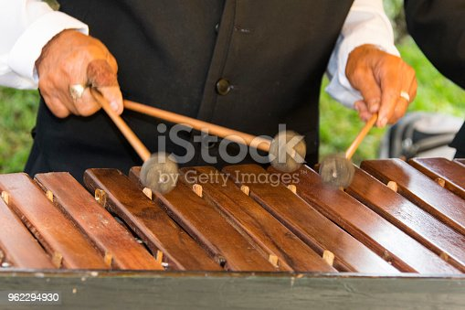 National instrument made with Hormigo, Platymiscium dimorphandrum  wood the marimba keyboard.  Detail of hands playing melodies.