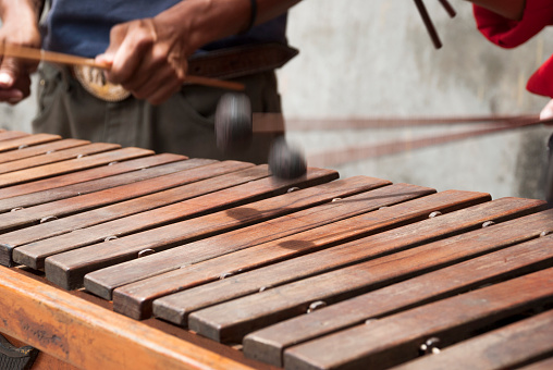 National instrument of Guatemala made with Hormigo, Platymiscium dimorphandrum  wood the marimba keyboard.  Detail of hands playing melodies.