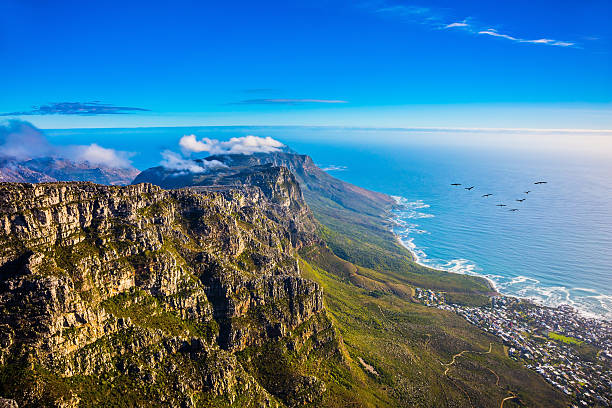 national park table mountain - south stock pictures, royalty-free photos & images