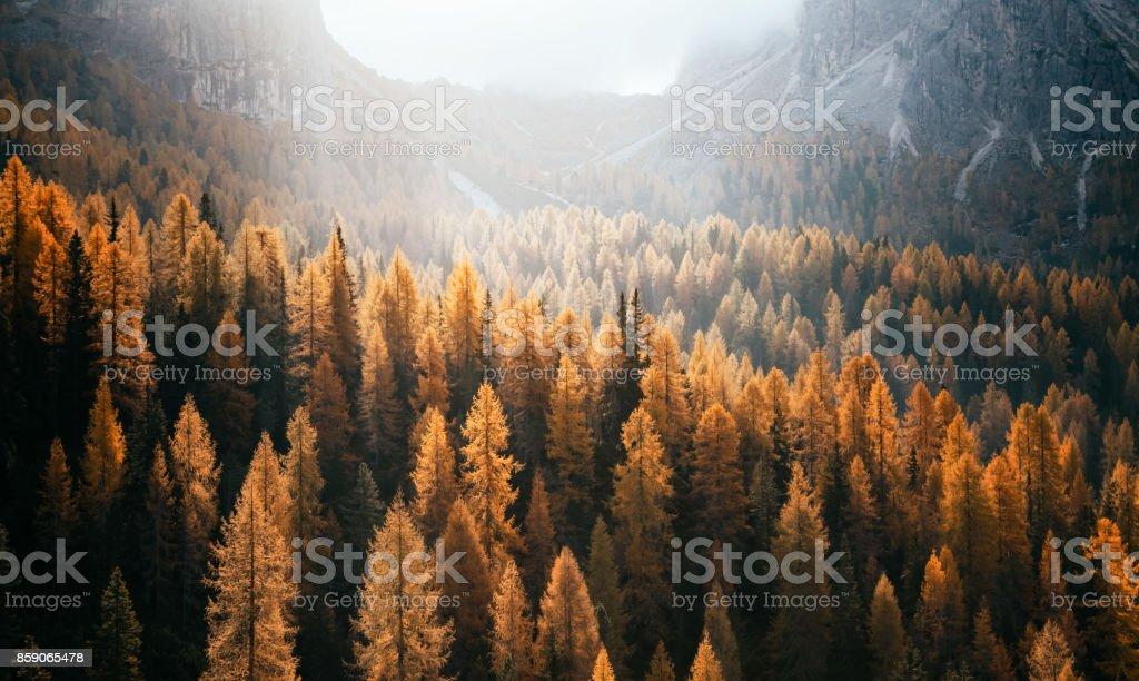 National park Tre Cime di Lavaredo, Dolomiti alps, South Tyrol, Auronzo, Italy, Europe. stock photo