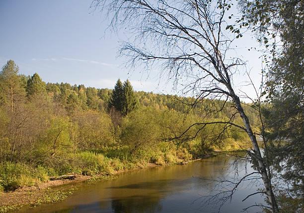National reserve  Deer Streams The river Serga 1 stock photo