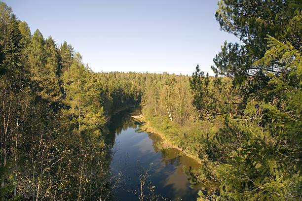 National reserve  Deer Streams The river Serga stock photo