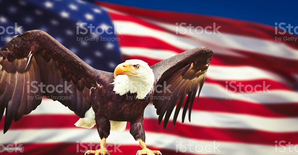 National symbols of the United States stock photo