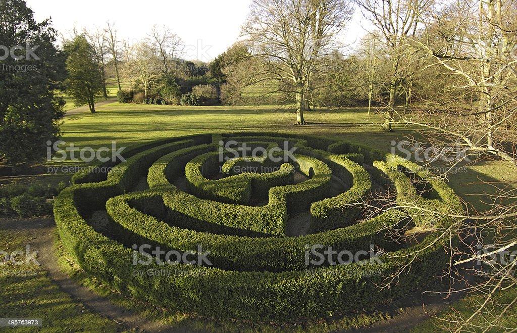 National Trust Hedge Maze Autumn Property Belton House