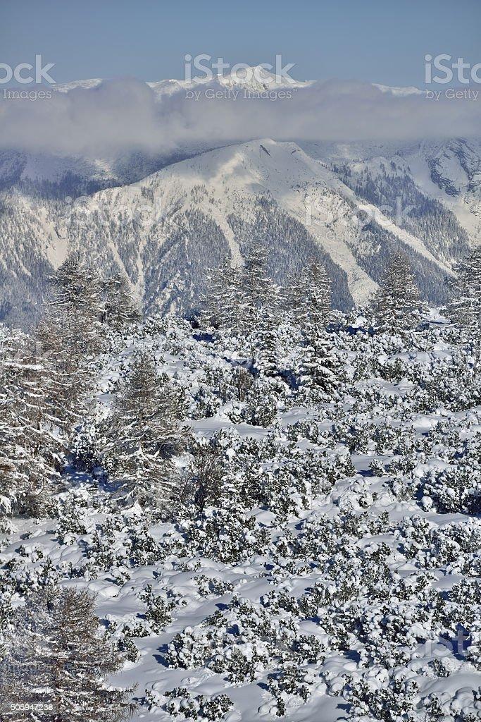 Nationalpark Kalkalpen in Upper Austria stock photo