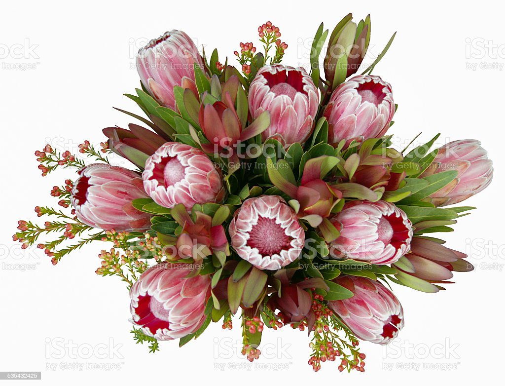 Native Australian Flower Bouquet stock photo