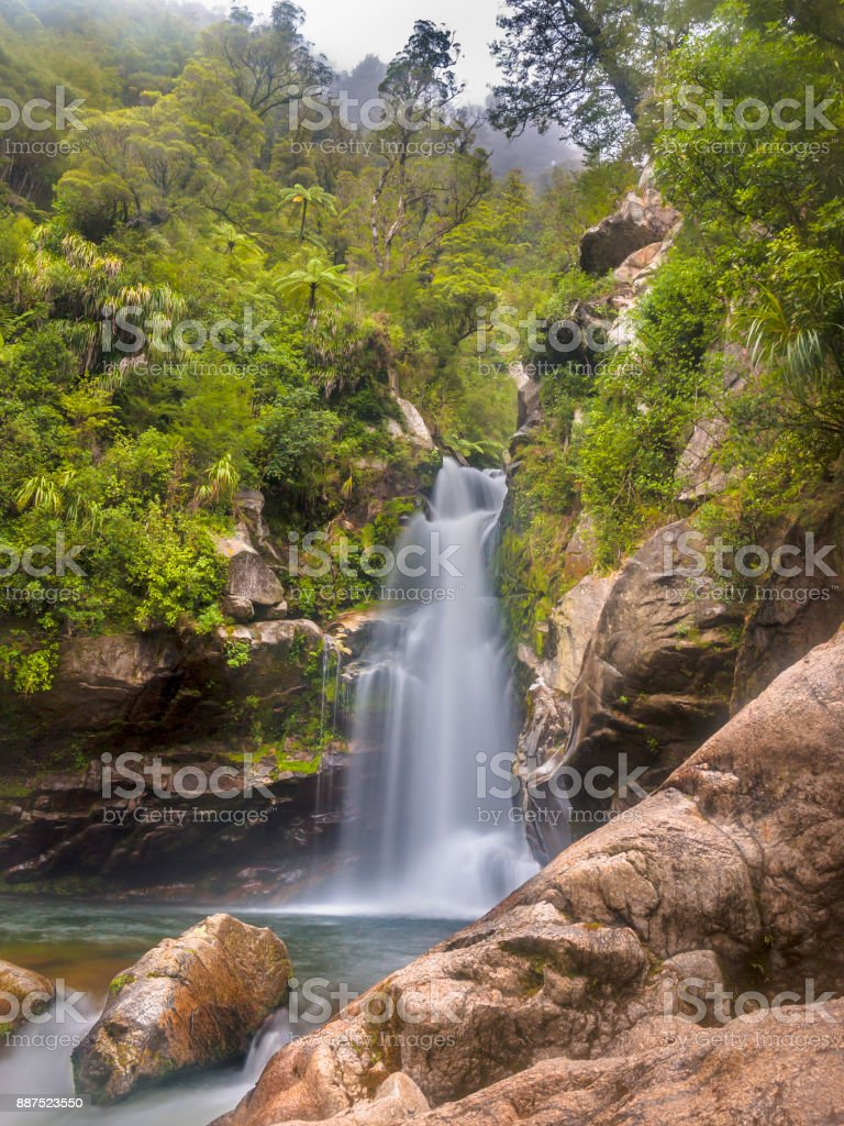 Native forest with waterfall New Zealand stock photo