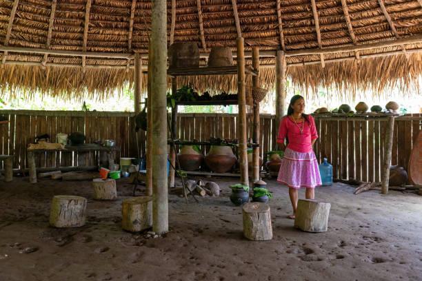 Native indigenous woman, Amazon Rainforest stock photo