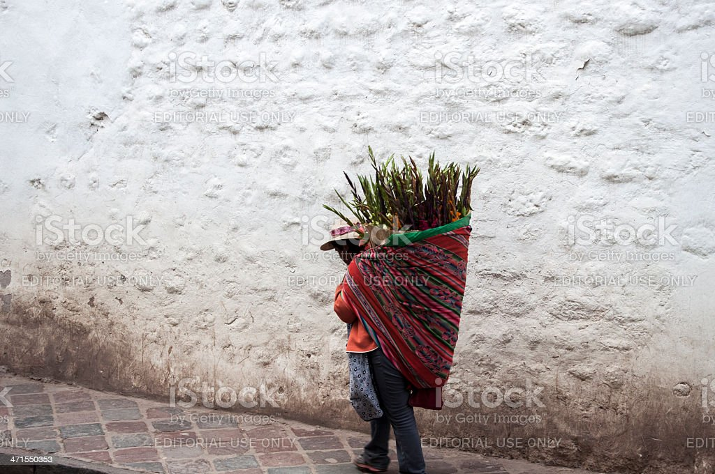 Native Peruvian Woman Carrying Flowers On Her Back stock photo