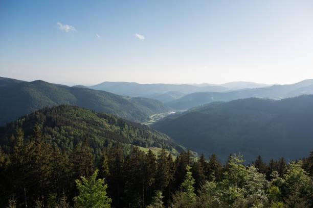 natue landschaft deutschland, schwarzwald - sommerferien baden württemberg stock-fotos und bilder