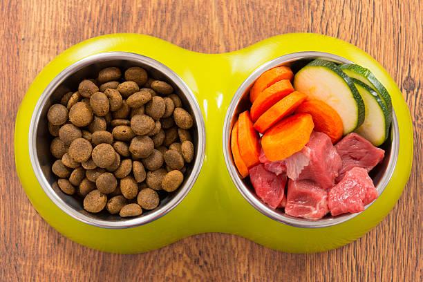 natural de alimentos para perros y seco - comida cruda fotografías e imágenes de stock