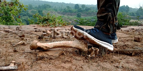 Male foot shoe upon Animal skeleton bone kept on rock stone at hill station.