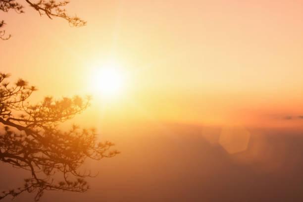 fundo natural desfocando cores quentes e luz solar brilhante na árvore. bokeh ou fundo natalino energia verde no céu cinza cor laranja padrões de luz simples abstrato flare nuvens à noite embaçam. - sol nascente horizonte drone cidade - fotografias e filmes do acervo
