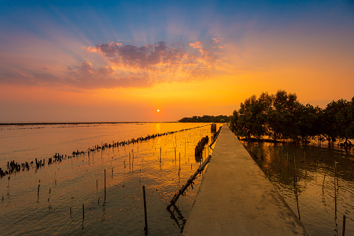 Natural background of route amidst the sea and the mangrove forest and beautiful nature during sunrise ,sunset. Beautiful landscape of Thailand