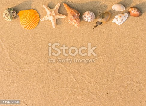 istock Natural background. The beach and seashells 510613298