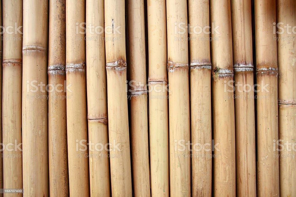 natural bamboo royalty-free stock photo