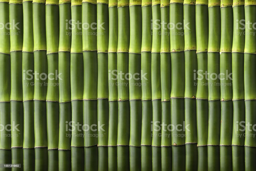 Natural bamboo seamless wall pattern stock photo