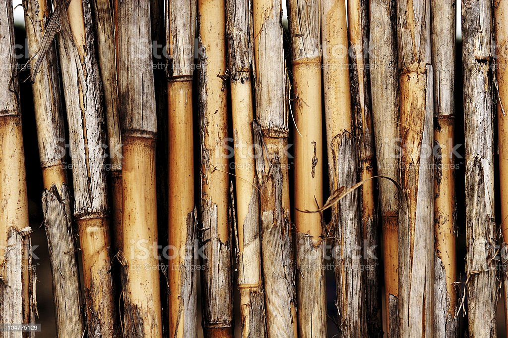 Natural bamboo texture royalty-free stock photo