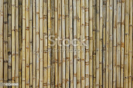 Bamboo - Plant, Bamboo - Material, Full Frame, Textured, Backgrounds