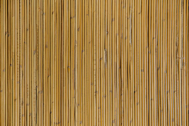 natural bamboo textured - bamboo stock photos and pictures