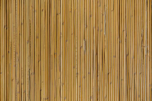 Con textura de bambú natural - foto de stock
