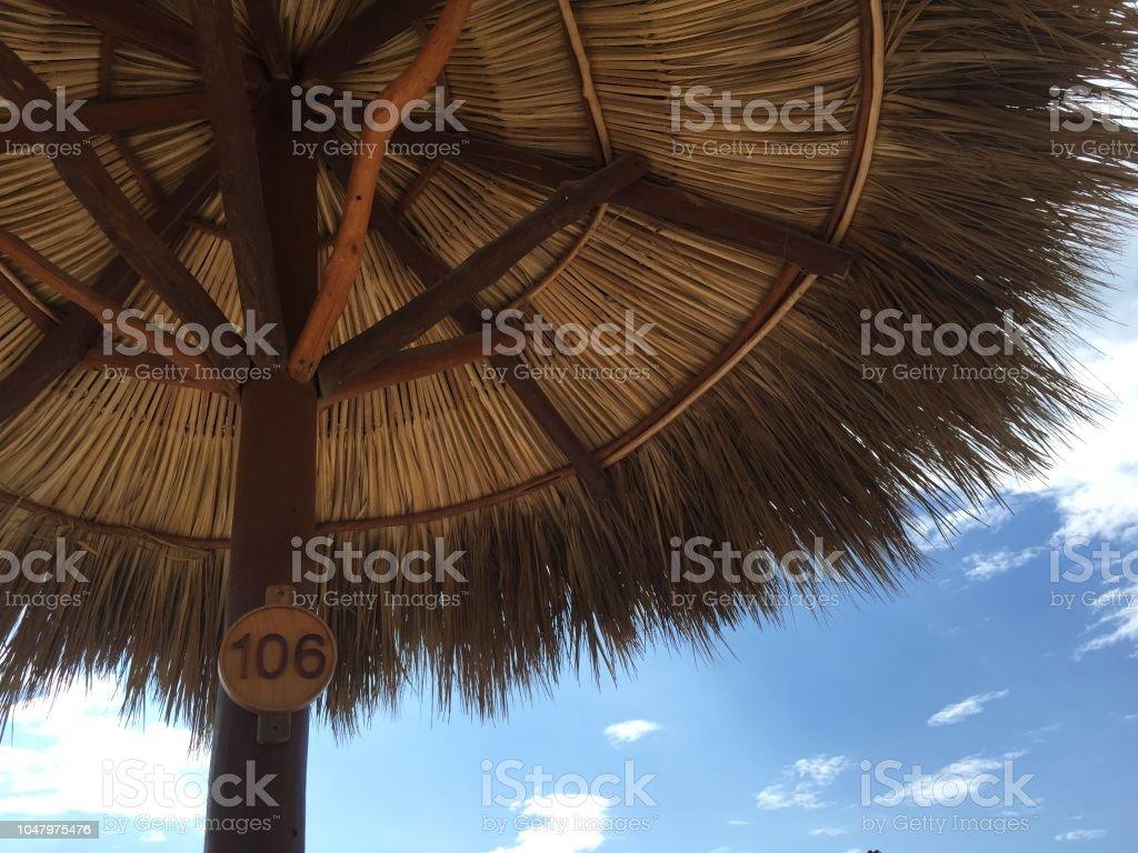 natural beach umbrella stock photo