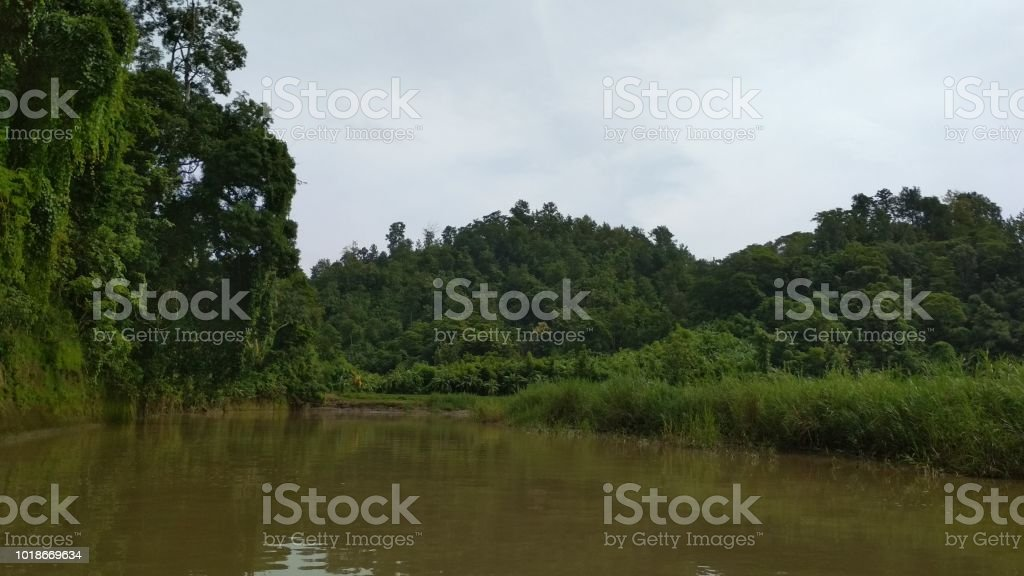 Natural Beauty Of Bangladesh Stock Photo & More Pictures of