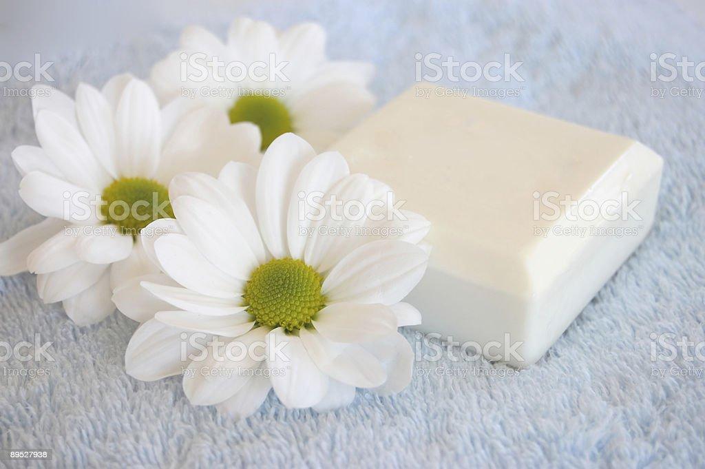 Natural Beauty 免版稅 stock photo