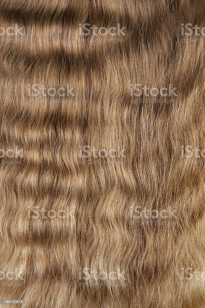Natural blonde hair stock photo