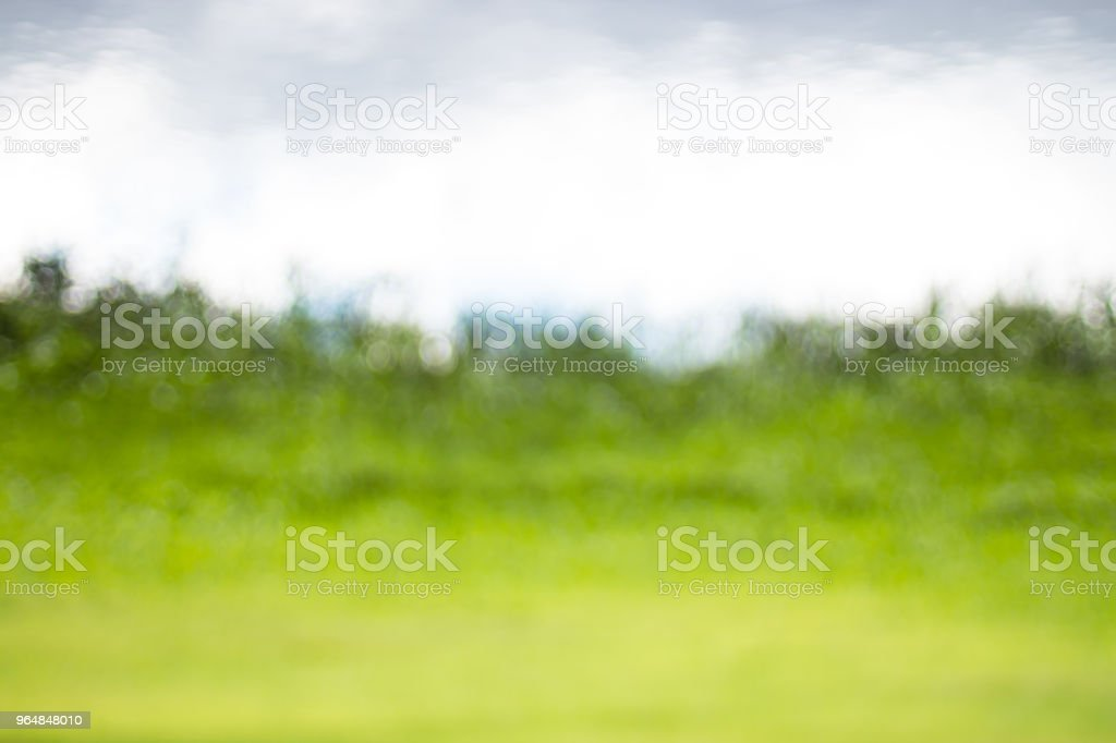 Natural bokeh background, Fresh healthy green bio background with abstract blurred foliage and bright summer sunlight. Special nature green leaves bokeh, Texture background. royalty-free stock photo