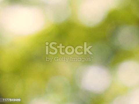 876018792istockphoto Natural bokeh Blurry green yellow with sunlight background 1177849489