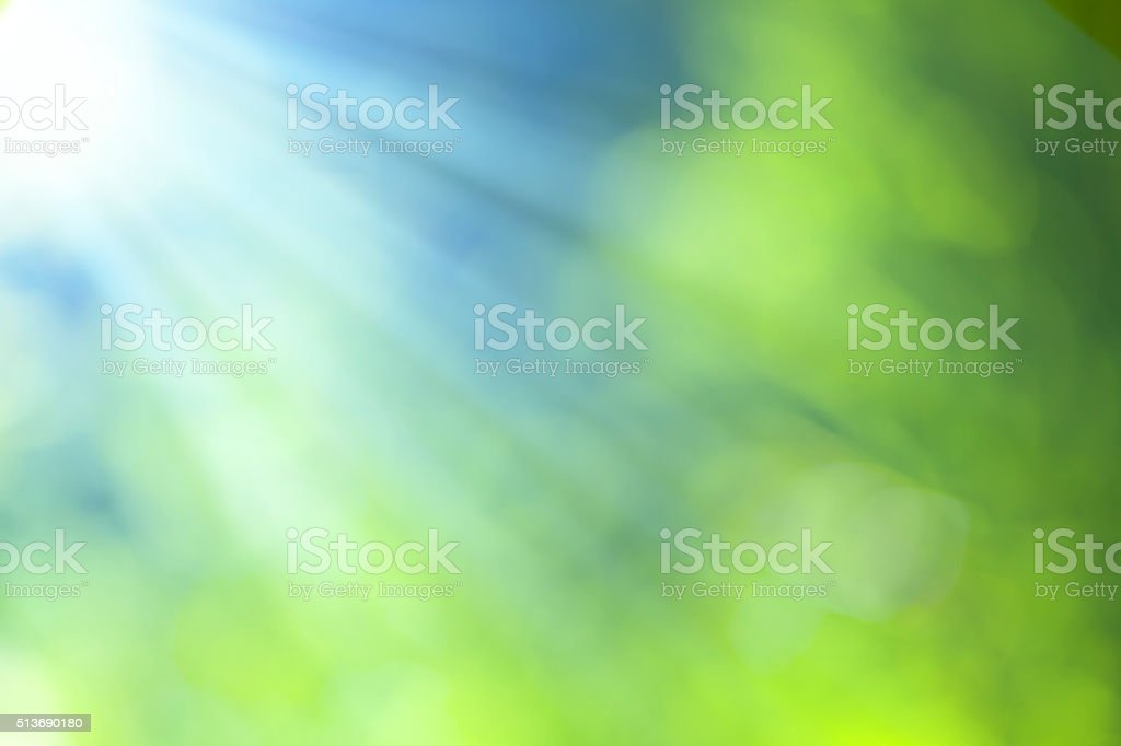 bokeh nature - Photo