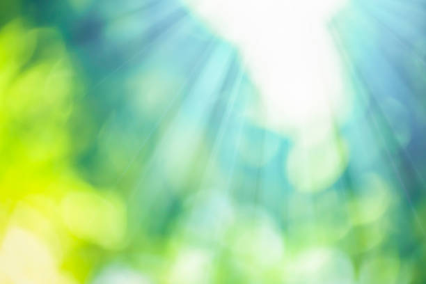 Natural bokeh with sunlight stock photo