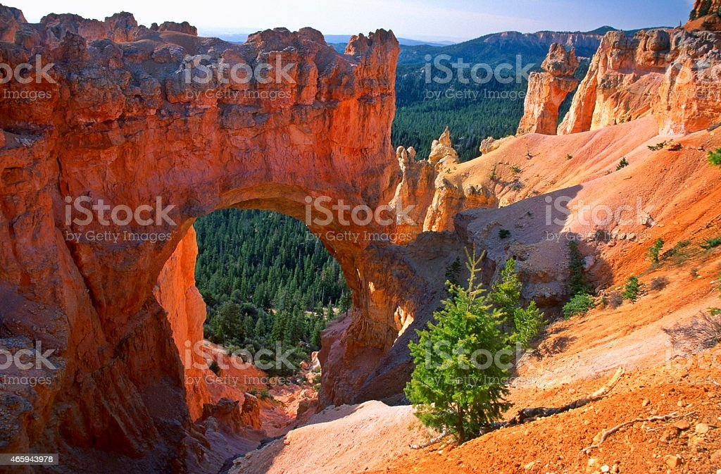 Natural Bridge im Bryce-Canyon – Foto