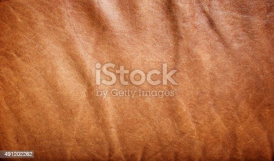 istock natural brown leather texture 491202262