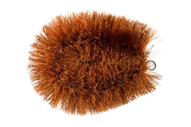 Natural Coconut Fiber Brush. Brown Natural Coconut Fiber Brush or Coir Fiber Vegetable Brush without handle for polishing and cleaning isolated on white background with clipping path. scrubbing brush stock pictures, royalty-free photos & images