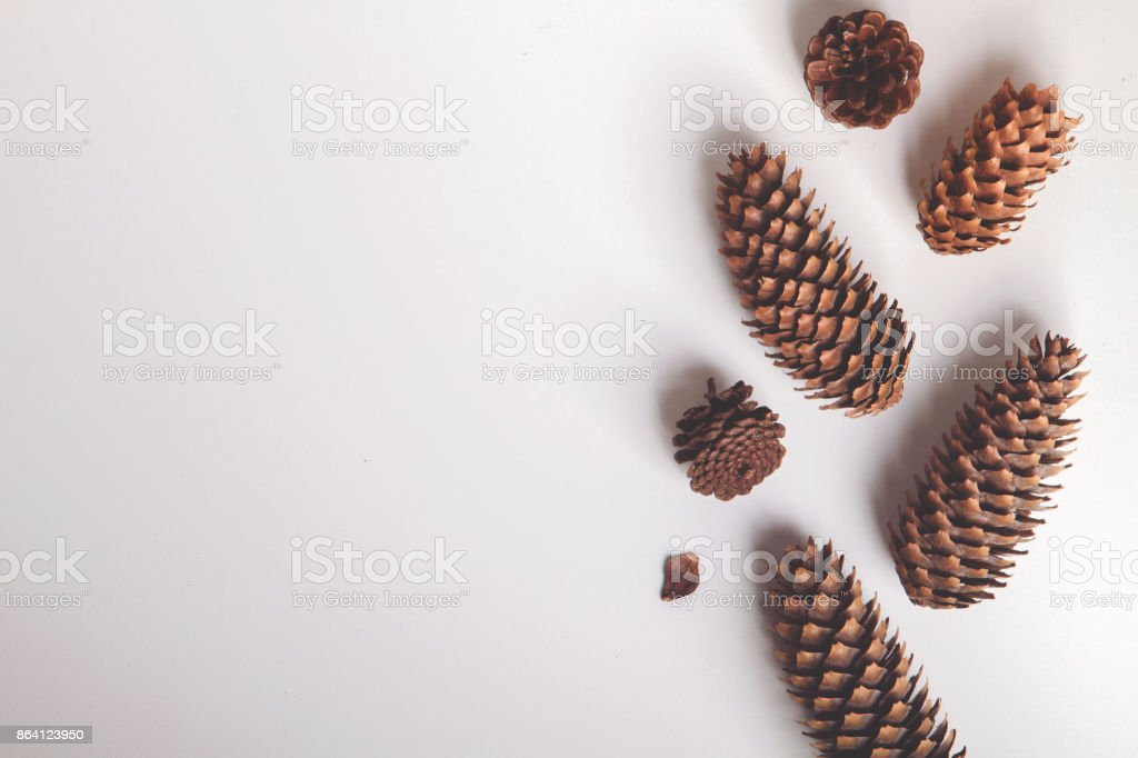 Natural cone composition pattern on white royalty-free stock photo