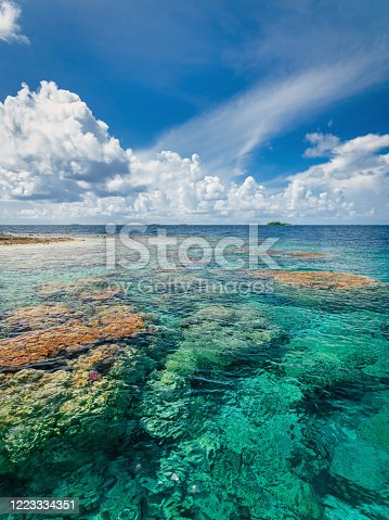 French Polynesia Fakarava Atoll Natural Transparent Coral Reef in the UNESCO Nature Biosphere Reserve. Fakarava Atoll Island, Tuamotu Islands Archipelago, French Polynesia, South Pacific Ocean.