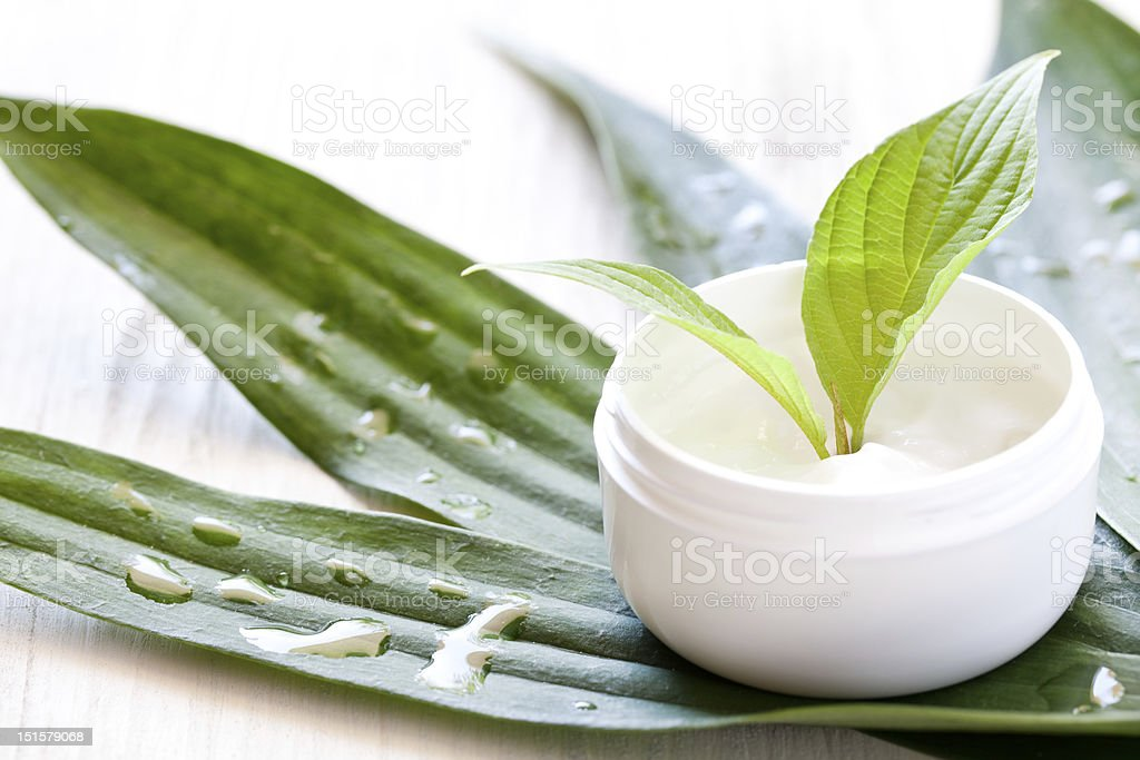 Natural cosmetics featuring aloe - Royalty-free Beauty Product Stock Photo