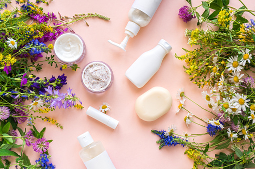 Eco friendly skincare. Natural cosmetics and organic herbs and flowers on pink background, top view, flat lay. Bio research and healthy lifestyle concept.