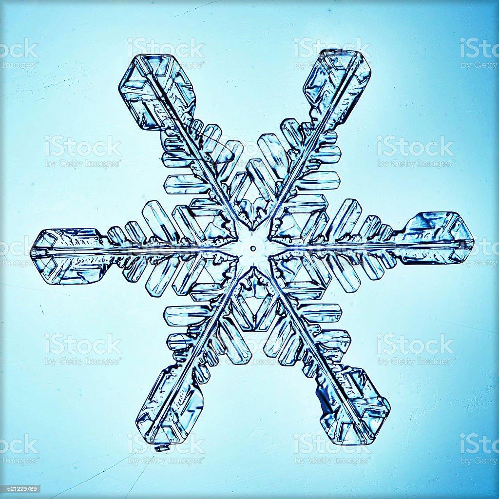 natural crystal snowflake macro stock photo