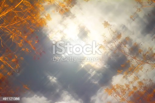 478539432 istock photo Natural dark sky background soft sparkle 491121386