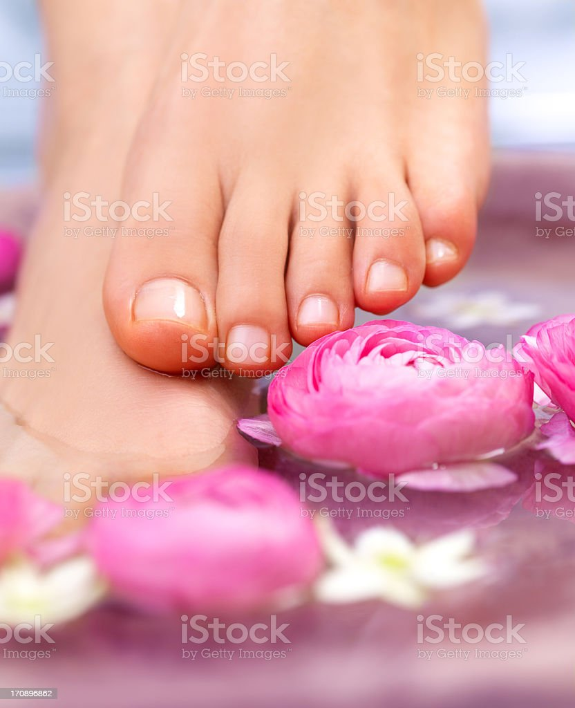 Natural decor for a pampering pedicure  royalty-free stock photo