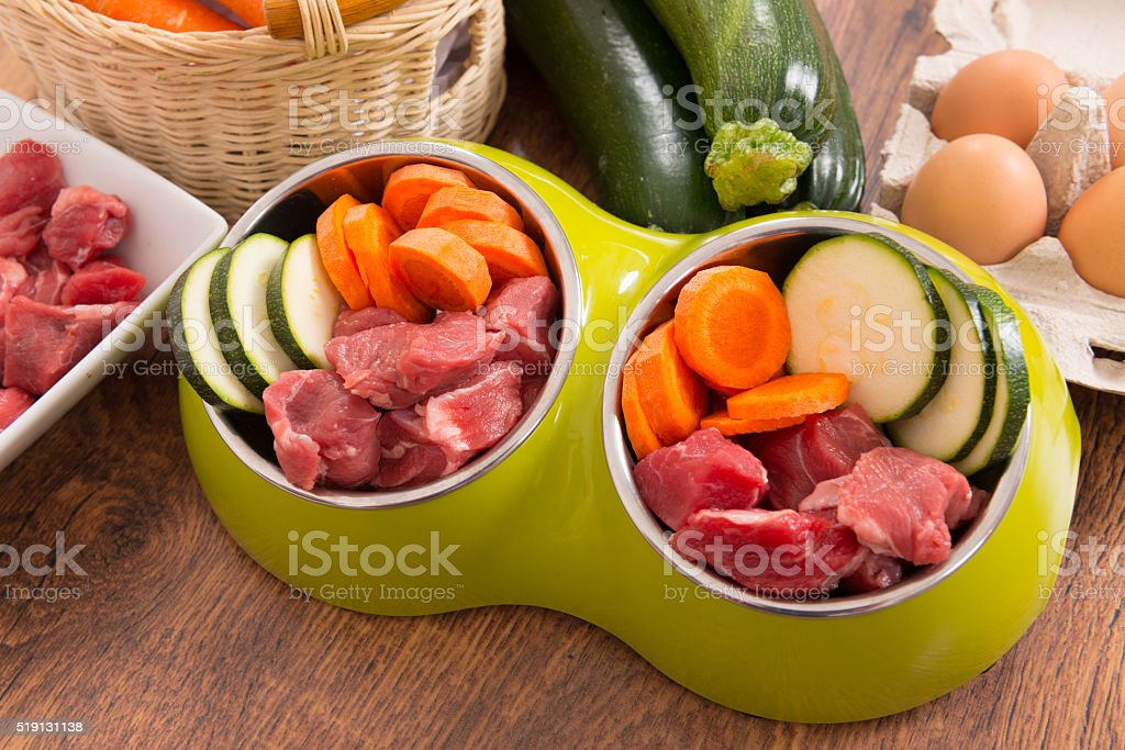 Natural dog food stock photo