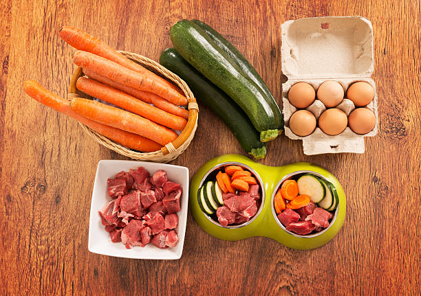 Natural dog food Natural, organic dog's food in a bowl with ingredients zucchini, carrot, eggs and raw meat dog food ingredient stock pictures, royalty-free photos & images
