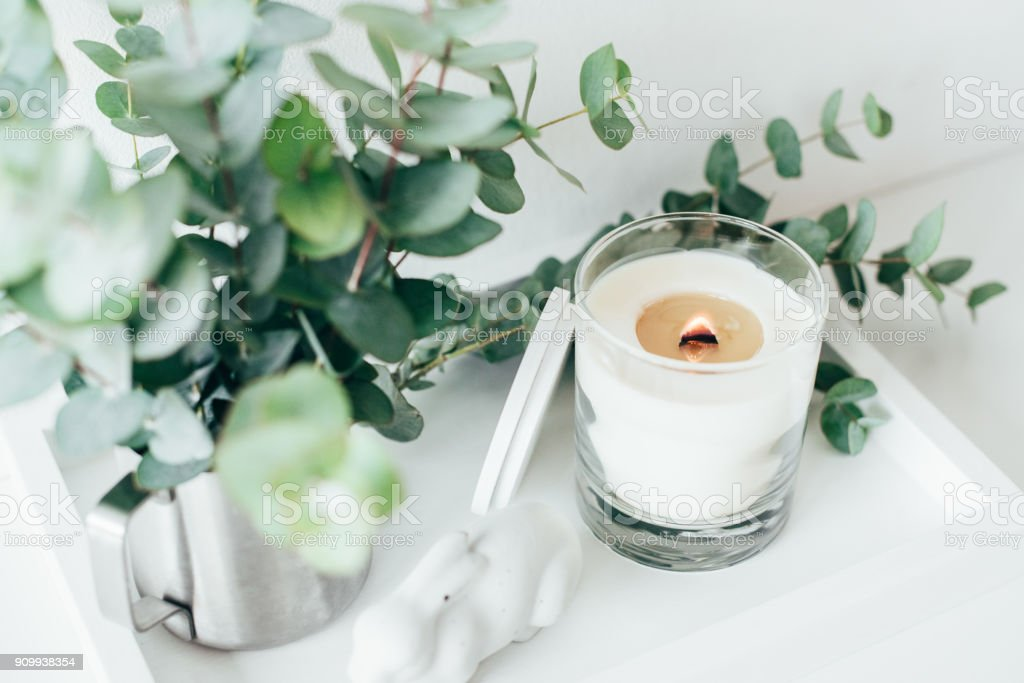 Natural eco home decor with green leaves and burning candle on t stock photo