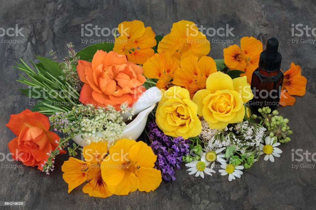 Natural Flower and Herb Therapy royalty-free stock photo