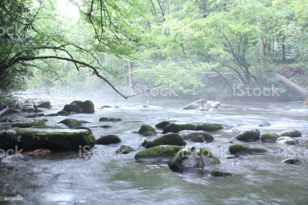 Natural Freshwater River with Mossy Rocks stock photo