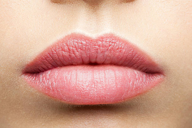 natural frosted pink lips - human lips stock photos and pictures